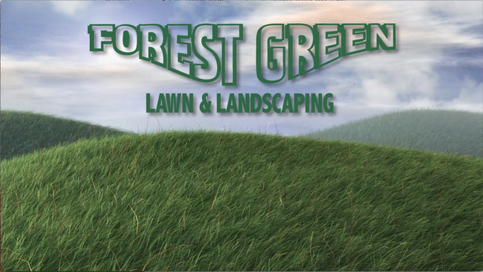 forest_green_feature